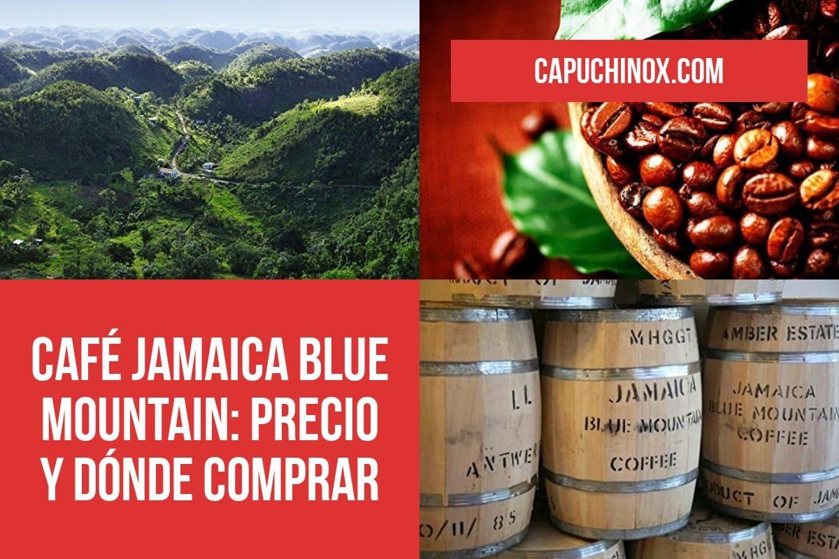 Café Jamaica Blue Mountain: Precio y dónde comprar este café tan bueno y tan caro