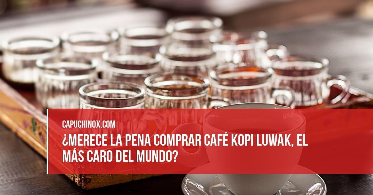 ¿Merece la pena probar el café Kopi Luwak a pesar de su alto precio?