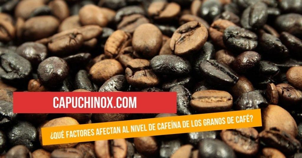 ¿Qué factores afectan al nivel de cafeína de los granos de café?